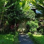 Samkhya Villas Ubud Foto