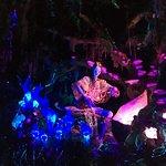 Pandora à noite
