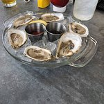 Oysters (6)