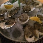 Fresh blue point oysters