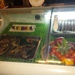 Vitrine à poissons réfrigérée.