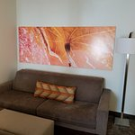 SpringHill Suites Shreveport-Bossier City / Louisiana Downs Photo