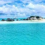 Bermuda Reef Explorer Photo