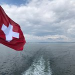 Heading home to the Zurich Dock.