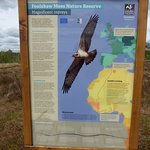 Foulshaw Moss Nature Reserve Photo