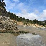 Starfish Point Condos照片