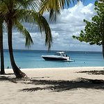 catamaran desde la isla