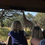Zebra Hills Safari Lodge ภาพถ่าย