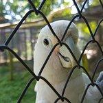 Zoo Sosto照片