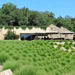 Stag's Leap Wine Cellar's - Fay Outlook & Visitor Center