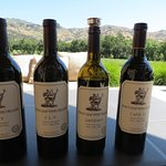 Stag's Leap Wine Cellar's - Tasting on the Patio
