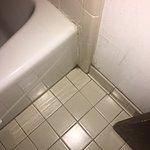 Mold around Bathtub (couldn't drop in video)