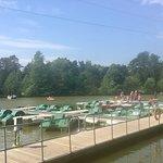 Center Parcs Elveden 🌳