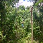 Florida Zipline Adventures Photo