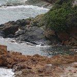 Il est bien situé sur la route du Cap Corse