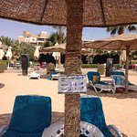 Reserved sunbed with beach Bar in background