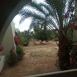 Djerba Aqua Resort Photo
