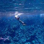 snorkeling-dead coral