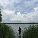 Fishing in the reeds