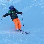 Bonsai Ski afbeelding