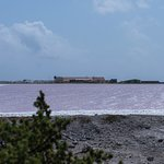 One of the salt ponds. The pink is from an algae that can live in the high salinity water