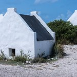 Slave huts. 8X8 with 5 foot headroom housed 4 men
