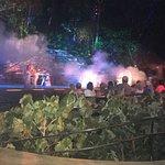 Rhythms of the Night by Vallarta Adventures ภาพถ่าย