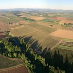 Floating over fields in the Willamette Valley