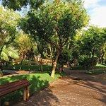 Биопарк Валенсия: зоны посещения