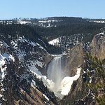 Tower waterfall Yellowstone National Park. Just one of the attractions in this spectacular park
