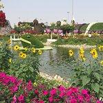 Dubai Miracle Garden ภาพถ่าย