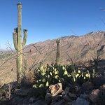 Foto de Sabino Canyon
