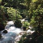 Zdjęcie Parque Nacional Barranca del Cupatitzio