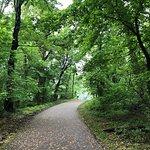 Alverthorpe Park照片