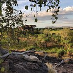Kakadu Dreams Day Tours Foto
