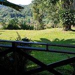 La Mision Mocona | Lodge de Selva Photo