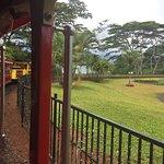 Fotografia de Pineapple Park - Volcano