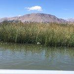 Uros Floating Islands照片