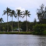 Smith's headquarters on the Wailua River, from the boat