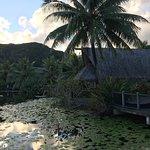 Maitai Lapita Village Huahine – fotografija