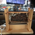 Honey in dining room