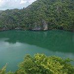 Blue Stars Kayaking照片