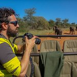 Game drives in an open safari vehicle with knowledgeable and enthusiastic guides can be exciting
