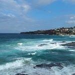 Coastal walk view