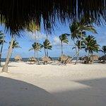Secrets Cap Cana Resort & Spa ภาพถ่าย