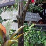 布里斯Spa简易别墅酒店照片