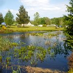 Glentrool Camping and Caravan Site Picture