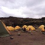 Camping style through Lemosho route-Kilimanjaro Climb
