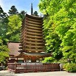 木造十三重の塔は圧巻の美しさ。新緑時期はさらに美しい