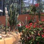 Фотография Botanical Garden (Hortus Botanicus)